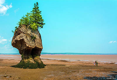 Hopewell Rocks In New Brunswick -  Canada Art Print