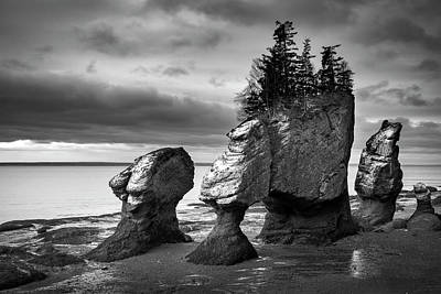Art Print featuring the photograph Hopewell Rocks by Patrick Downey