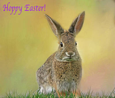 Art Print featuring the photograph Hoppy Easter  by Donna Kennedy