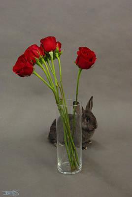 Photograph - Hoppy Valentine's Day 2 by Alana  Schmitt
