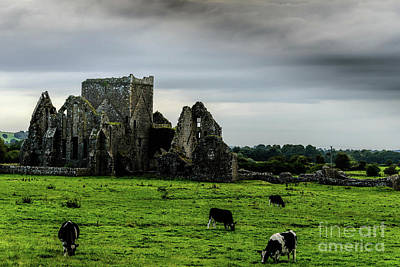 Moody Trees Rights Managed Images - Hore Abbey Royalty-Free Image by Elvis Vaughn