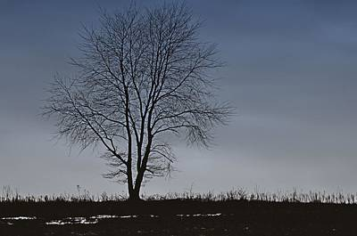 Photograph - Horizon In February by JAMART Photography