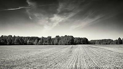 Photograph - Horizons Of Spring. Petrove, 2014. by Andriy Maykovskyi