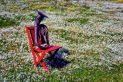 Tuba Photograph - Horn In Spring Field On Red Chair by Garry Gay