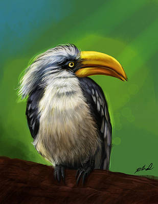 Hornbill Digital Art - Hornbill by Kamal Anjelo