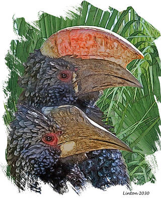Hornbill Digital Art - Hornbill Pair by Larry Linton