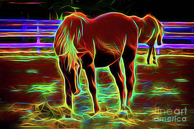 Photograph - Horse 12918 by Ray Shrewsberry