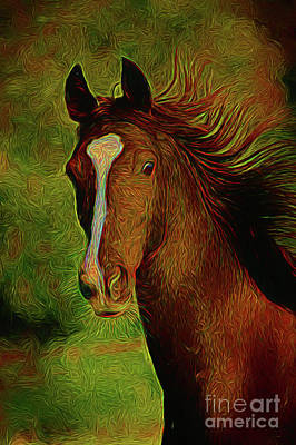 Photograph - Horse 14018 by Ray Shrewsberry