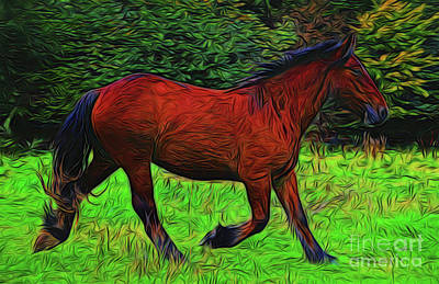 Photograph - Horse 14218 by Ray Shrewsberry