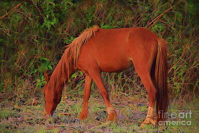 Photograph - Horse 17918 by Ray Shrewsberry