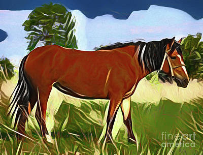 Photograph - Horse 20318 by Ray Shrewsberry