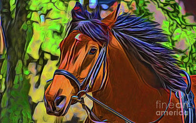 Photograph - Horse 20418 by Ray Shrewsberry
