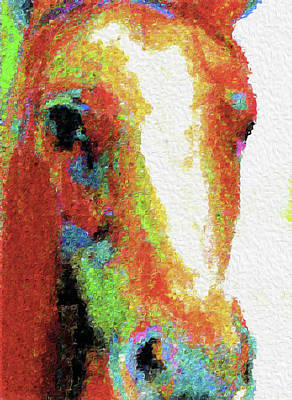 Mixed Media - Horse 241 By Nixo by Nicholas Nixo