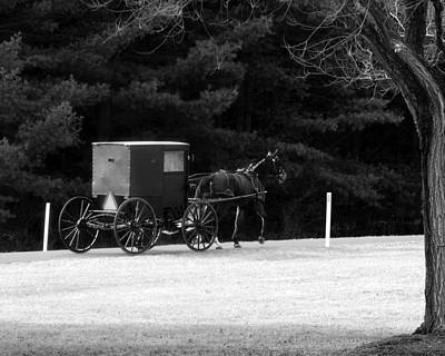 Photograph - Horse And Buggy 1 by George Jones