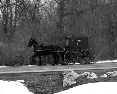 Photograph - Horse And Buggy 2 by George Jones