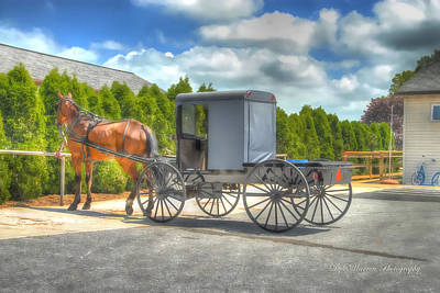 Photograph - Horse And Buggy   by Dyle   Warren