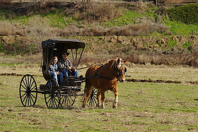 Horse And Buggy Art Print by Jeff Swan