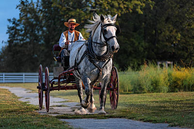 Horse And Buggy Art Print by Lone Dakota Photography