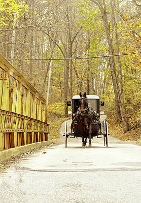 Photograph - Horse And Buggy by Susan Maxwell Schmidt