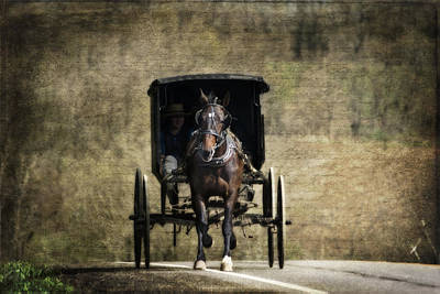 Horse And Buggy Art Print by Tom Mc Nemar