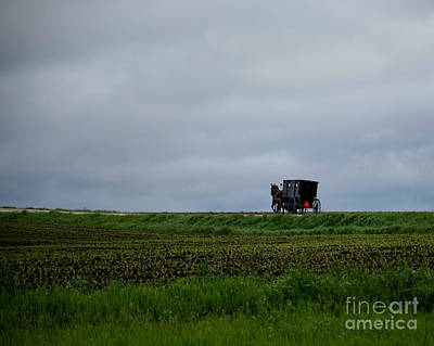 Photograph - Horse And Buggy Travel by Kathy M Krause