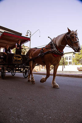 Horse And Carriage 3 Art Print