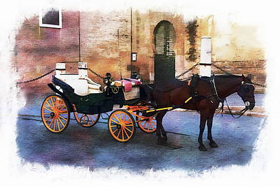 Photograph - Horse And Carriage by Anthony Dezenzio