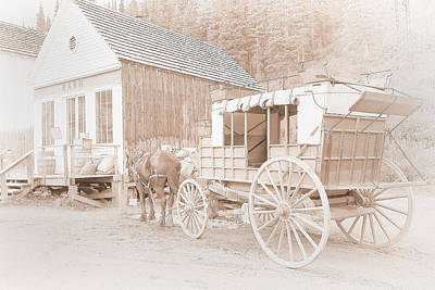 Old Village Photograph - Horse And Carriage by Naman Imagery