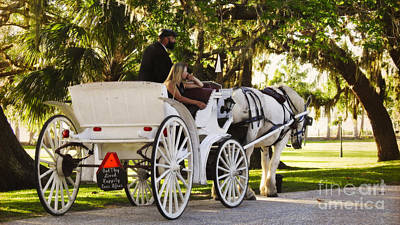 Photograph - Horse And Carriage by Ella Kaye Dickey