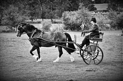 Kim Fearheiley Photography - Horse And Cart by Mark Hunter