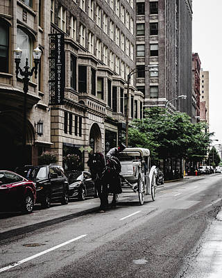 Photograph - Horse And Chariot In Downtown Saint Louis by Dylan Murphy