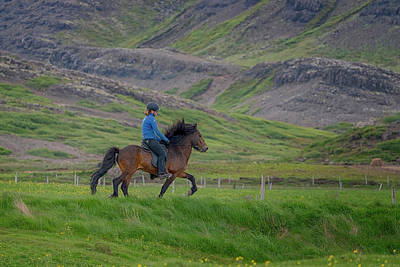 Photograph - Horse And Rider by Tom Singleton