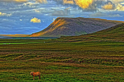 Art Print featuring the photograph Horse And Sky by Scott Mahon