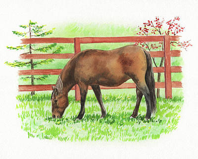 Animals Royalty-Free and Rights-Managed Images - Horse At The Ranch Watercolor Painting by Irina Sztukowski
