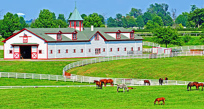 Photograph - Horse Barn by Barry Fowler
