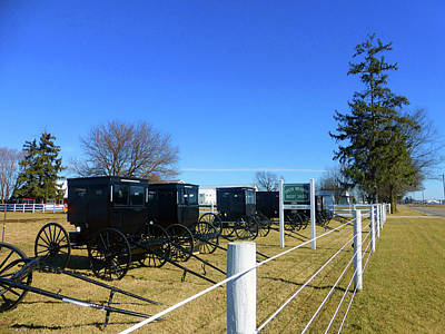 Amish Community Photograph - Horse Buggies For Sale by Tina M Wenger