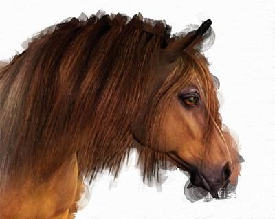 Horse Head Painting - Horse By Mary Bassett by Mary Bassett