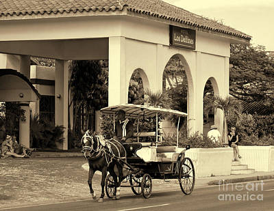 Photograph - Horse Carriage - In Sepia by Les Palenik