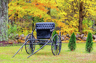 Photograph - Horse Carriage In The Fall by Mike Ste Marie