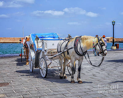 Photograph - Horse Cart For Tourists In Xania, Crete by Patricia Hofmeester