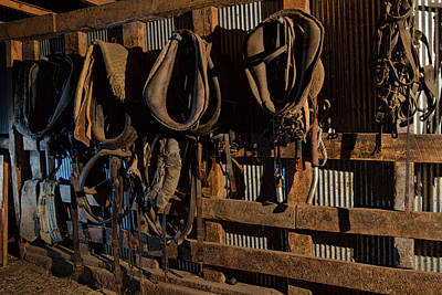 Photograph - Horse Collars And Harness by Alana Thrower