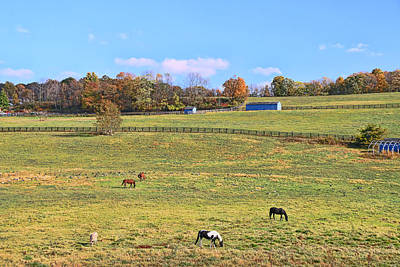 Photograph - Horse Country # 3 by Allen Beatty