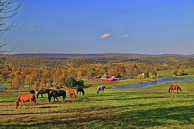 Photograph - Horse Country # 4 by Allen Beatty