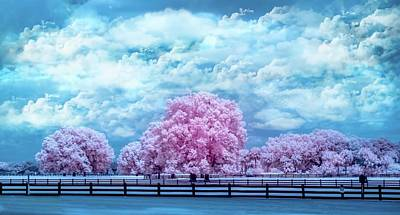 Art Print featuring the photograph Horse Country In Pink by Louis Ferreira