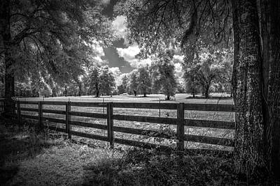 Art Print featuring the photograph Horse Country by Louis Ferreira