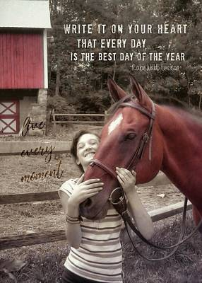 Horse Crazy Quote Art Print by JAMART Photography