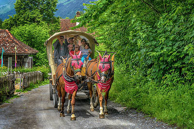 Photograph - Horse Drawn Wagon Ballenberg Switzerland_dsc8328_16 by Greg Kluempers