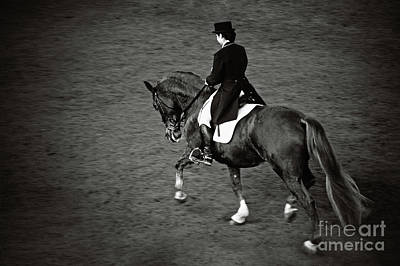 Photograph - Horse Dressage - Black And White by Dimitar Hristov