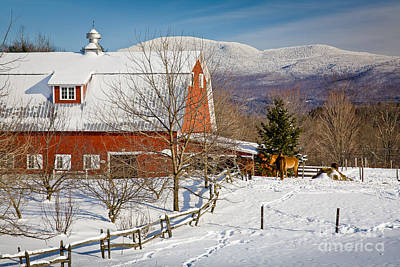 Horse Farm And Mount Mansfield Art Print by Susan Cole Kelly