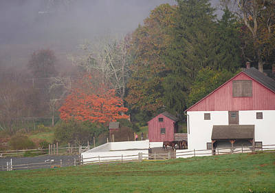 Photograph - Horse Farm by Paul Ross